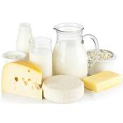mini-laiterie-transformation-des-produits-laitiers